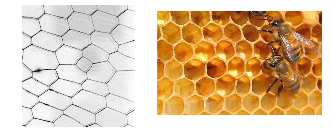 Math of Soap Bubbles and Honeycombs | Brilliant Math & Science Wiki