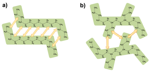 The structure of a compound can influence the formation and strength of intermolecular forces. The branched alkane has fewer opportunities to form London dispersion forces compared to its straight-chain counterpart.