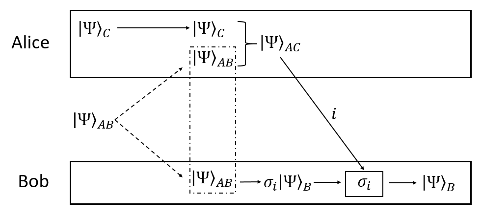Schematic of quantum teleportation algorithm. Entangled state AB is split so that particle A goes to Alice and B to Bob. Alice then entangles A and C, disentangling B and sending Bob the information he needs to recover the state of C on the other end. Based on .