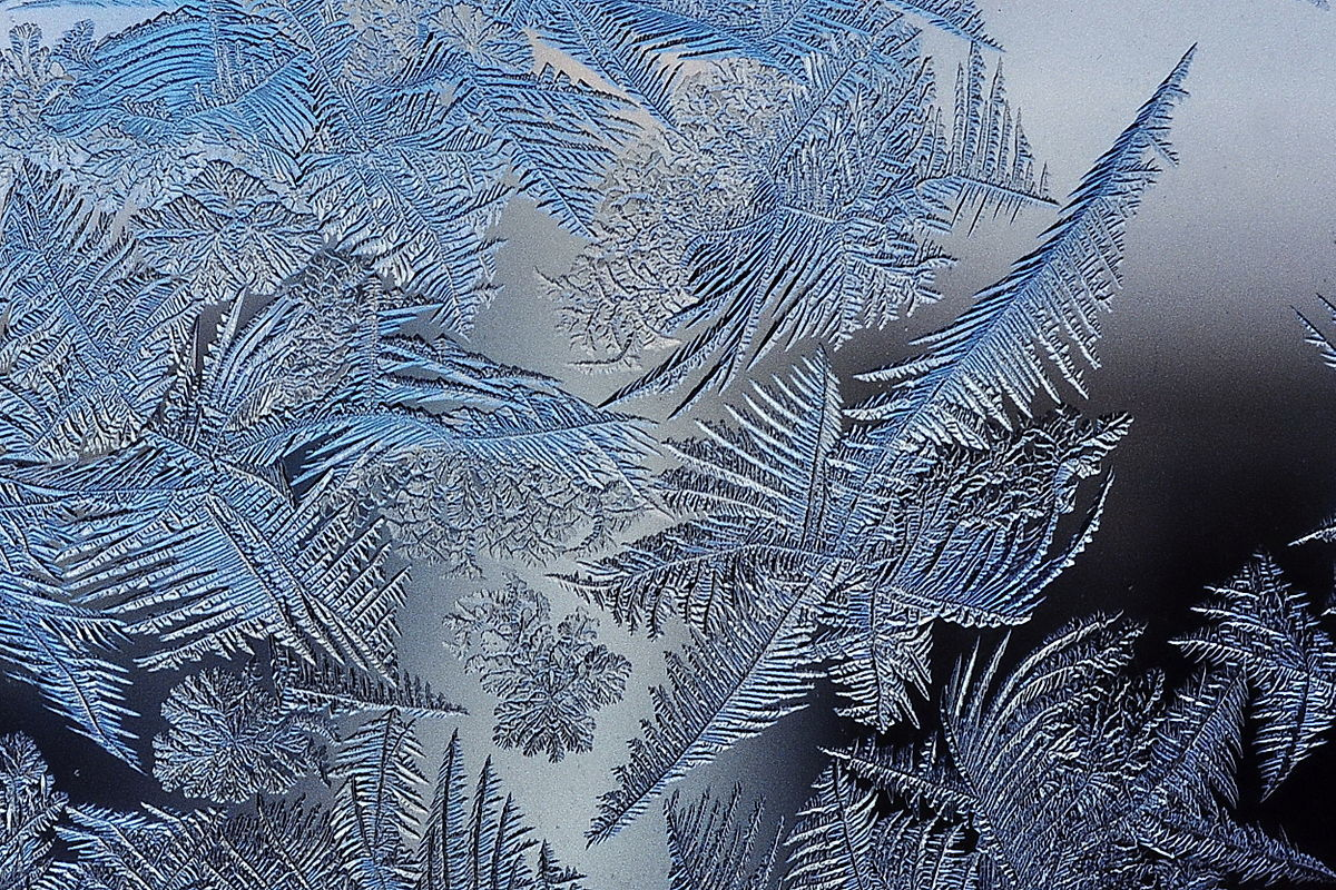 &quot;Frost patterns 2&quot; by Schnobby (Licensed under CC BY-SA 3.0 via Wikimedia Commons http://commons.wikimedia.org/wiki/File:Frost<em>patterns</em>2.jpg)