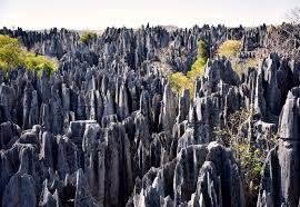 Limestone karst in Tsingy de Bemaraha National Park, Madagascar