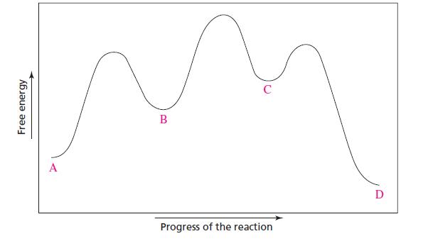 Chemistry Problem Reaction Coordinate Diagrams Abhishek Singh