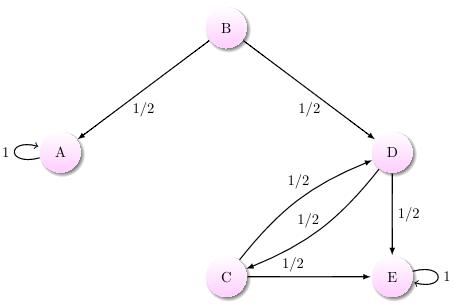 An absorbing Markov chain