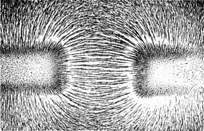 The magnetic fields of two north poles of different magnets interact to produce field lines in iron filings. Wikimedia