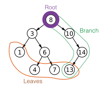 Roots, trees, and branches are the basic parts of a tree data structure.