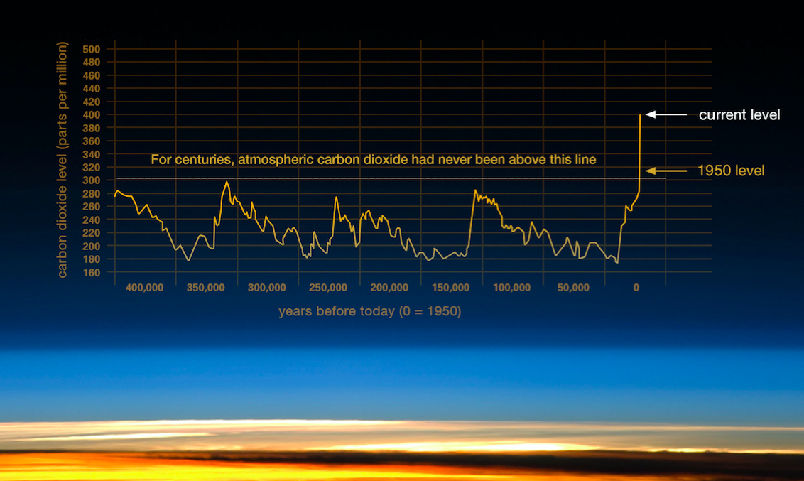 The data collected shows that carbon concentrations since 1950 are abnormal compared to historic fluctuations [1]