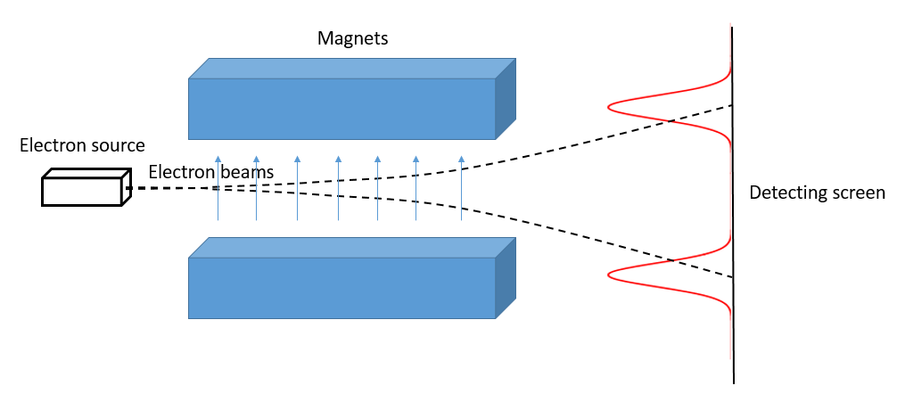 Experimental setup of a Stern-Gerlach experiment. An electron source beams electrons into a magnetic gradient, where they are deflected according to their intrinsic magnetic moment. Only two peaks are detected beyond the magnets, corresponding to the two possible spin values.